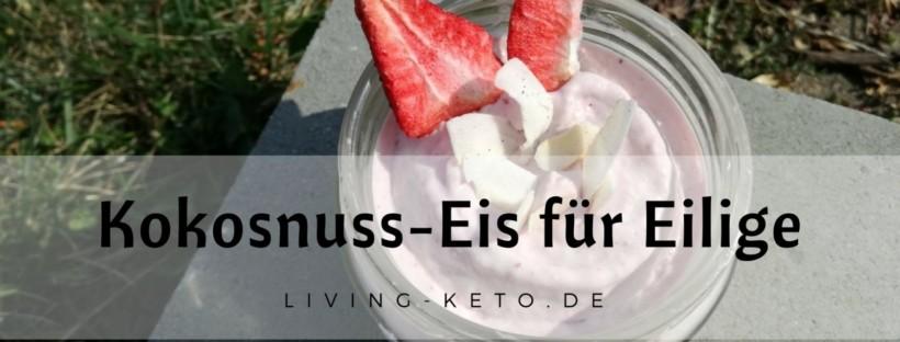 Kokosnuss-Eis für Eilige
